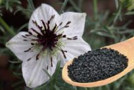 مقاومت بدن در مقابل بیماریها با مصرف سیاهدانه