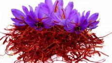 زیاده روی در مصرف زعفران باعث آسیب به کبد و کلیه می شود